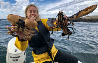 Lobster fishing lottery